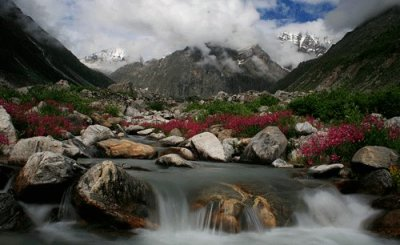 Pushpawati-river-deep-in-the-valley-of-flowers