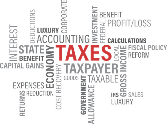 What does getting audited by the IRS mean?